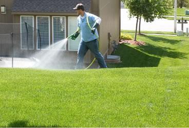 service_fertilizer